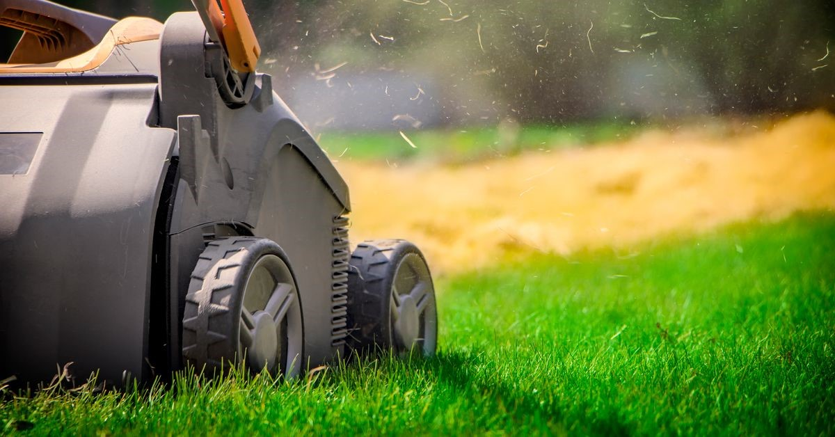 Lawn Dilemmas of 2021: Self-care, Pros, or just Aeration Packages?